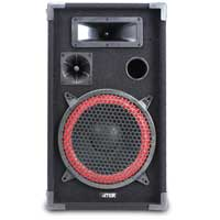"""Pair of MAX 10"""" Passive Speakers 600W"""