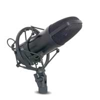 PD PDS-M01 Studio Condenser Microphone