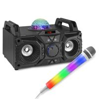 Fenton KAR100 Bluetooth Karaoke Party Speakers & 2 Karaoke Microphones