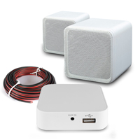 WiFi HI-Fi System White Wall Mount Speakers with Amplifier