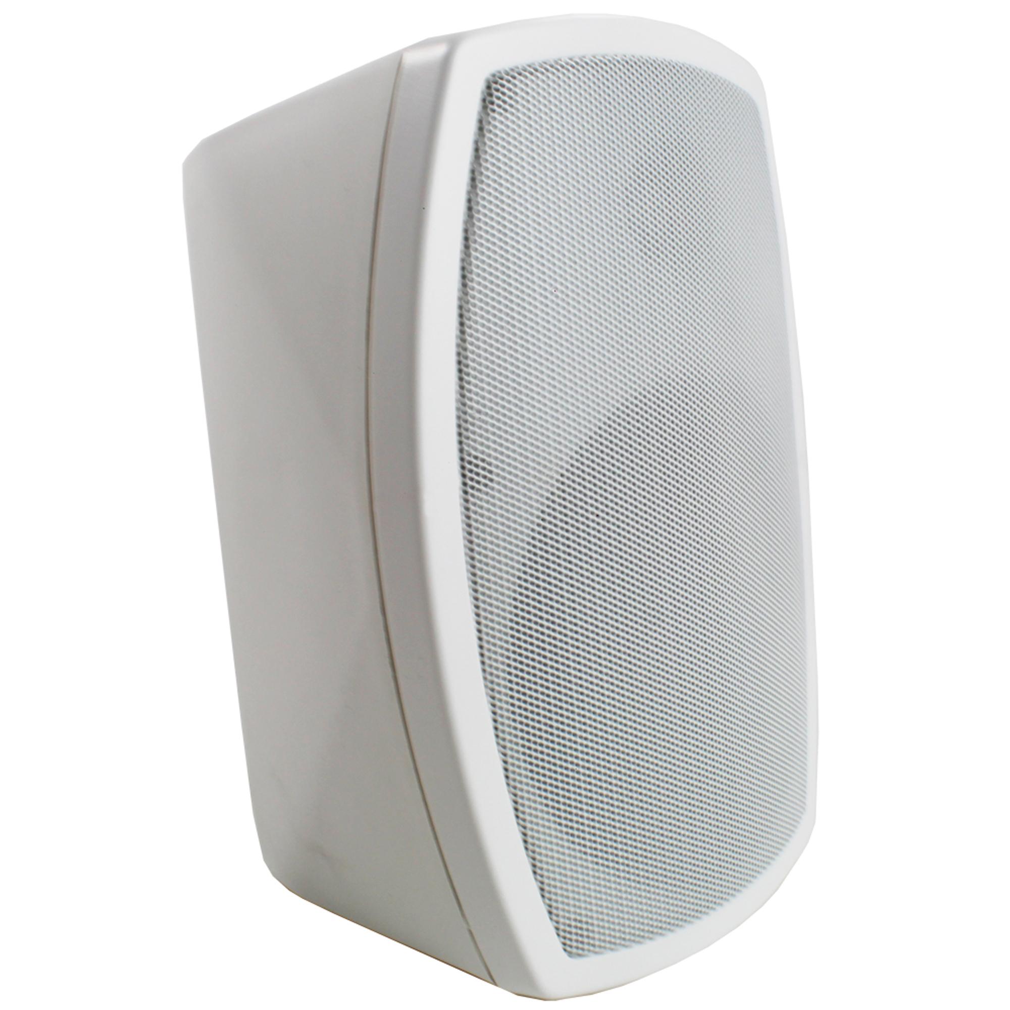 "PD ISPT5W 5"" 100V Wall Speaker"