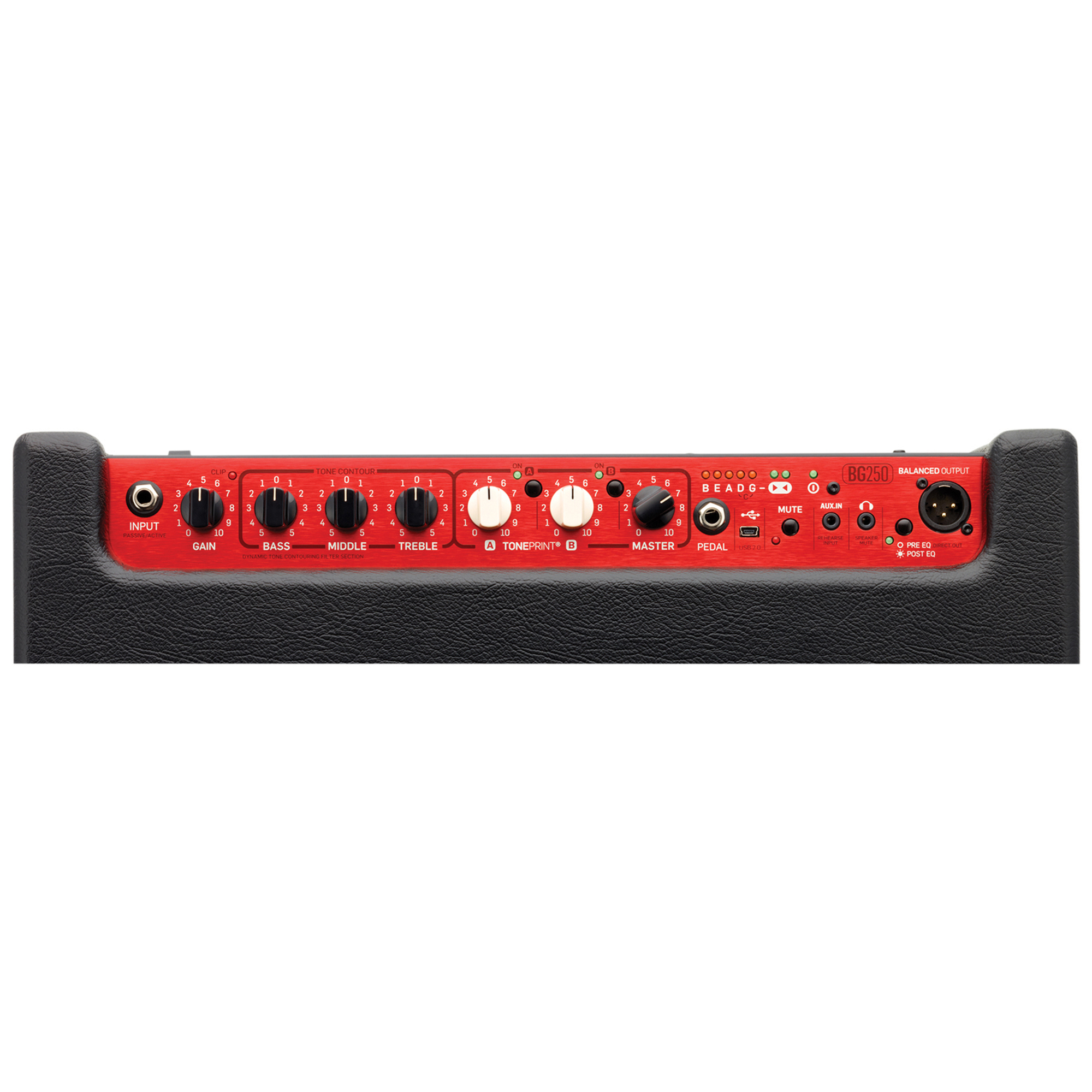 tc electronic tc068 bg250 210 bass guitar combo. Black Bedroom Furniture Sets. Home Design Ideas