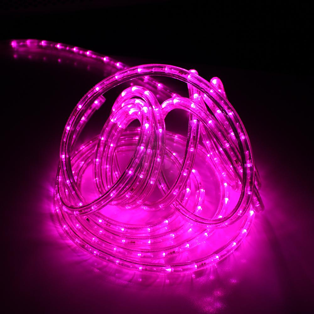 8M LED Pink / Purple Rope Light - Flashing Multi Function RopeLight Lighting eBay